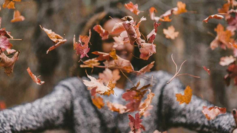 Detox de Outono