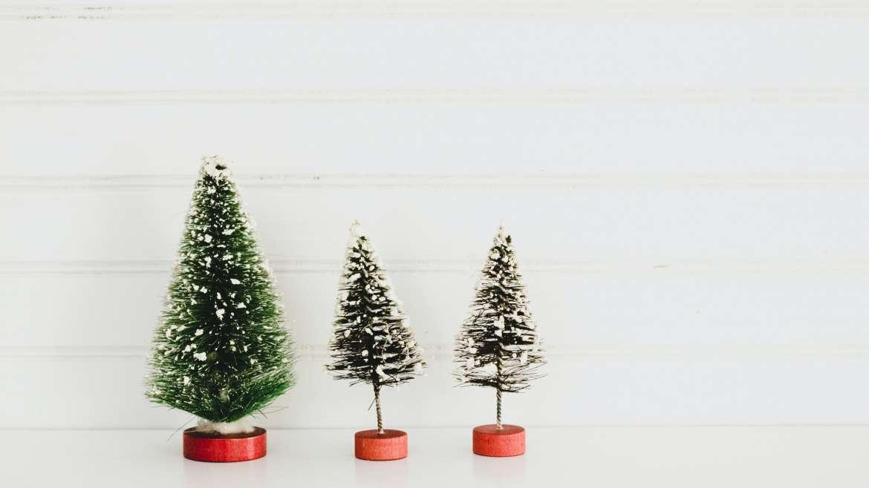 Alimentação saudável: como sobreviver ao Natal